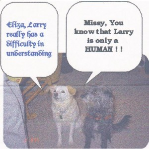 Larry is a student of Missy and Eliza