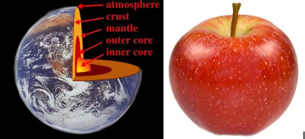 the health of the apple-skin and biosphere is one thing (not the sum the health of the parts).