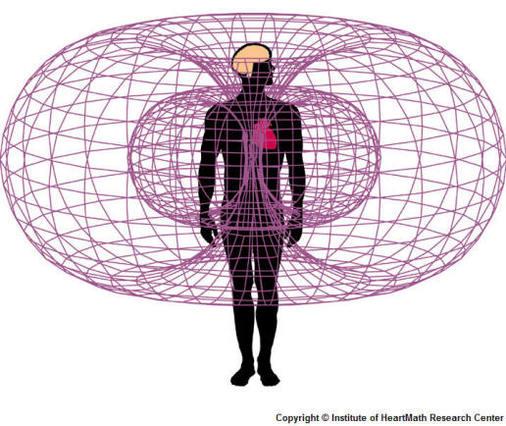 spiral-torus-heart